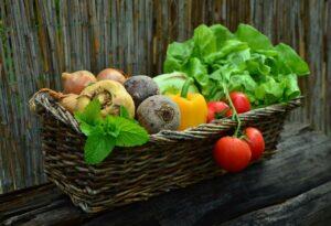 la production végétale, les légumes