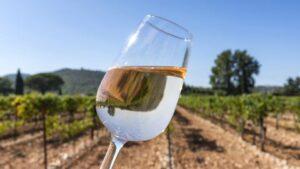 un verre de vin rosé clair
