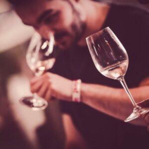 dégustation vin de rosé