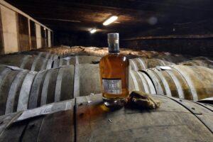 Chais à barriques, chêne Whiskies