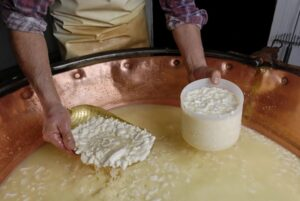 Fabrication d'un fromage artisanal France