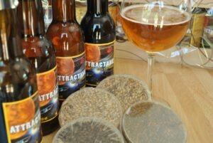 Bouteilles, verres bières artisanales