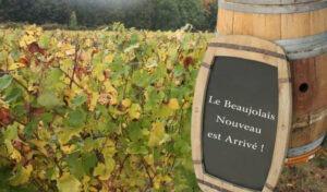 Le Beaujolais nouveau est arrivé,