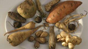 Légumes anciens,