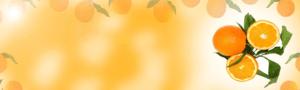 Bannière d'oranges