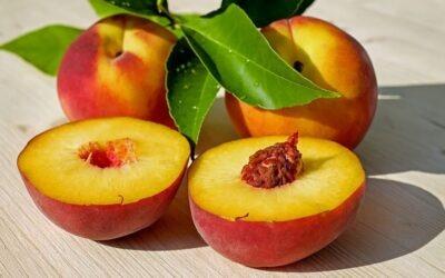 Les Fruits de saison, son origine, son histoire