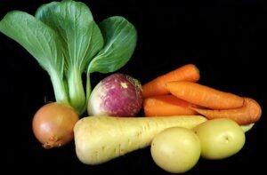 Légumes panais, carottes,