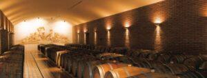 Cave à vins Corse,