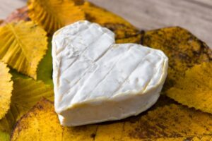 Fromage d'automne
