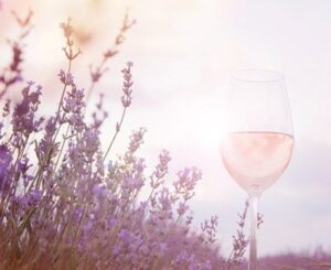 verre Rosé de Provence,