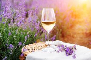 Verre Rosé de Provence & son champs de Lavande,