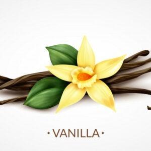 Vanille noire de Madagascar,