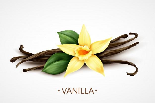 La vanille, l'épice des fins gastronomes