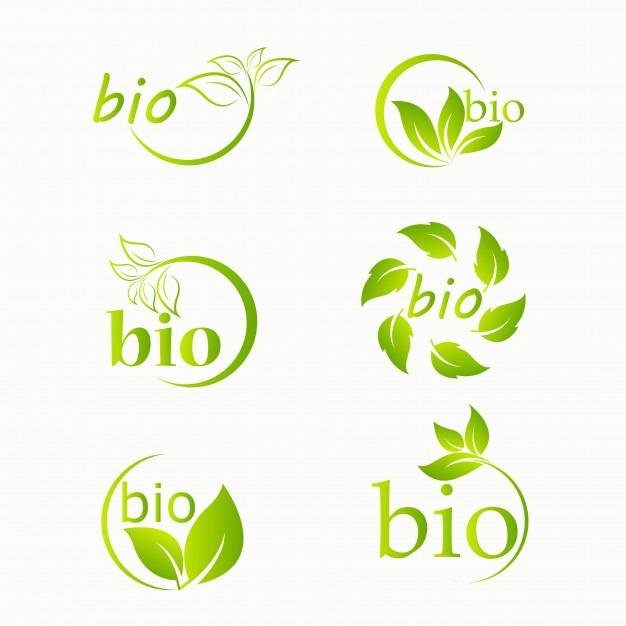 Les 6 labels vin bio ?