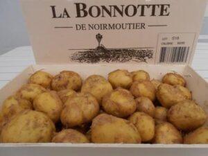 bonnotte-de-noirmoutier-via-ile-de-noirmoutier,