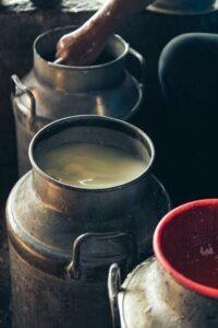 Petit lait fabrication du fromage le greuil,