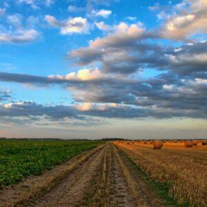 l'agriculture de la Côte d'Or